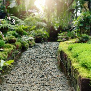 Grys ogrodowy